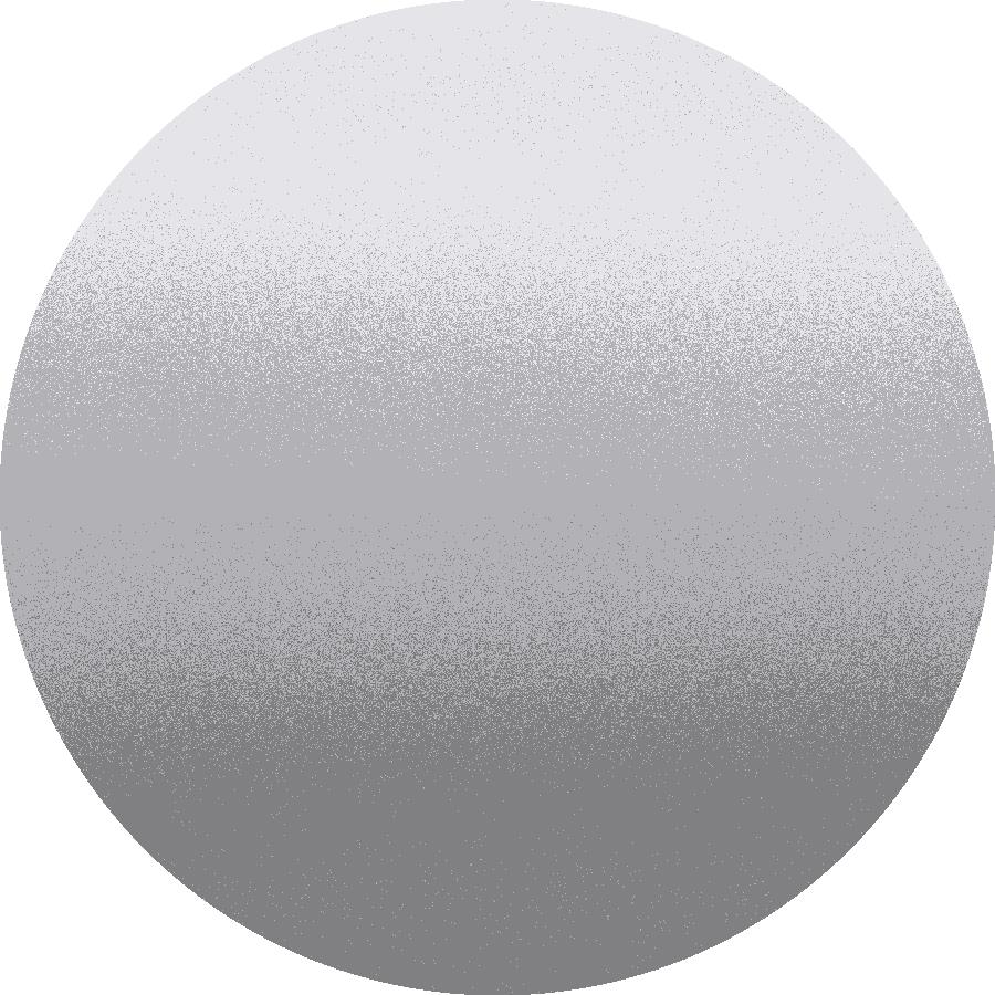dettaglio Silver